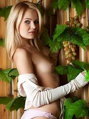 Talia | Fruit of the Vine