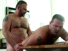 Hairy gay daddies fuck doggy style in the kitchen